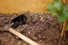 Soil Conditioner: Everything You Need to Know for a Healthy Garden Remove Urine Smell, Urine Smells, Dog Pee Smell, Permeable Driveway, Humic Acid, Dog Urine, Compost Tea, Soil Ph, Sandy Soil