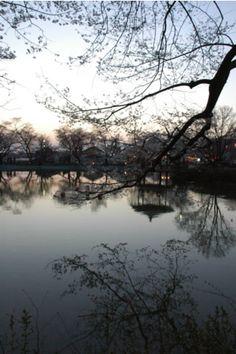 エル写庫 003 竜ヶ池(須坂市)