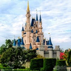 pictures of disney   little girls when you think of walt disney world you think of ...