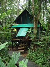 Costa Rica Hotels in Southern Caribbean, Almonds and Corals - Costa Rica Experts