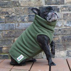 Boys Turtleneck - Olive Green - French Bulldog Pug Fleece Sweater – Babies & Beasts