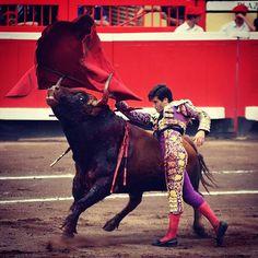 Gran tarde de Garrido hoy en Bilbao.  Foto 📷: @estefaniaazul #Torerazo @garrido_santos #Bilbao #Toros #Tauromaquia #SemanaGrande #SoyTaurino #VengaQueTeQuedaOtro #ElMismoSitio2añosDespués
