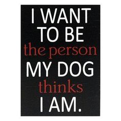 I WANT TO BE the person MY DOG thinks I AM.  -photo credit to the owner #dogs #cats