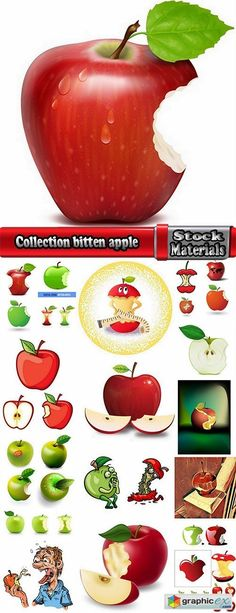 Collection bitten apple trace of teeth fruit vector image 25 EPS