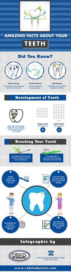 This infographic presents some amazing facts about your teeth. Looking for a reliable dentist in Irving, TX? Contact Rabile Family Dentistry.