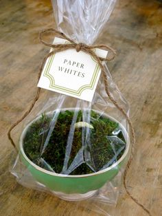 Hostess gift idea- Potted paper whites in Anthropologie bowl with moss. Great presentation!