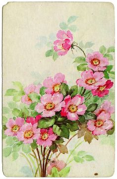 Welcome Spring! Vintage spring blossoms card.