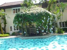 small swimming pool photos - Google Search