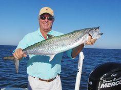 http://casualliescharters.com/yahoo_site_admin/assets/images/Kingfish-Bruce_Clark.86170633.JPG