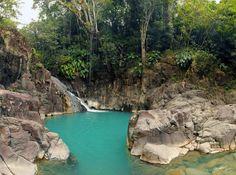 Le top 10 des rivières et cascades à découvrir en Guadeloupe French West Indies, Paradise Travel, Caribbean Art, Welcome To The Jungle, France Travel, Places To See, Travel Photos, Vacation, Destinations