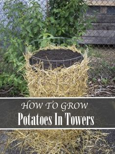 How To Grow Potatoes In Towers...http://homestead-and-survival.com/how-to-grow-potatoes-in-towers/