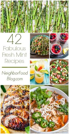 Is mint overtaking your backyard? Put it to good use with over 40 refreshing mint recipes for drinks, desserts, and everything in between. Herb Recipes, Veggie Recipes, Vegetarian Recipes, Dinner Recipes, Mint Leaves Recipe, Fresh Mint Leaves, Uses For Mint Leaves, Spearmint Recipes, Mint Herb