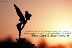 You know that place between sleep and awake, the place where you can still remember dreaming? That's where I'll always love you. Great Quotes, Quotes To Live By, Me Quotes, Inspirational Quotes, Quotable Quotes, Ill Always Love You, Love You So Much, Tinkerbell Quotes, Tinkerbell Disney