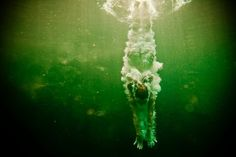 Underwater Nude Series by the american photographer Neil Craver