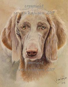 "Faith, LH weim. 10"" watercolour, commission."