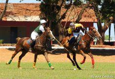 @ Playa del Carmen you can also play Polo / ¿Listos para disfrutar un partido de Polo? Foto vía El Rey Polo Country Club