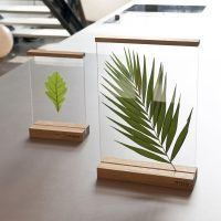 Floating frames 'between' to create your own composition - Diy Decoration House Plants Decor, Plant Decor, Decoration Plante, Leaf Art, Floating Frame, Floating Picture Frames, Resin Crafts, Wood Projects, Diy Home Decor