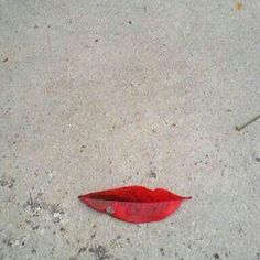 What do you see in this photo??? Just a leaf or more?? ;) Fantasy&Fantastic #fall #leaf #mouth