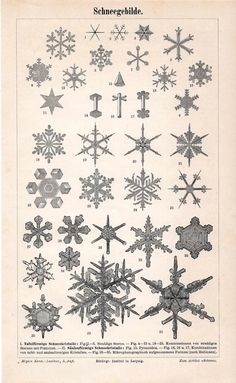 Vintage snowflake print from 1889 on etsy
