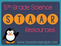 The Science Penguin: 5th Grade Science STAAR
