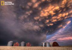 Beautiful sunset over the wheat fields of Saskatchewan, Canada #nationalgeographic