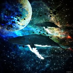 Cosmic Whales by ShaneGallagher on deviantART