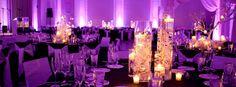 Royal Wedding Planner :: Destination wedding In Rajasthan