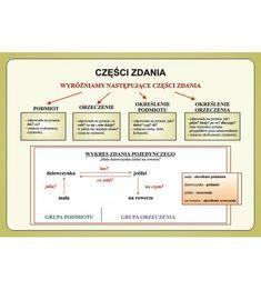 Przyroda - Zestaw plansz w wersji drukowanej + program CD Polish Language, Montessori