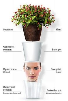 How to make a flower pot head