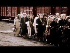 Inside Treblinka Death camp video