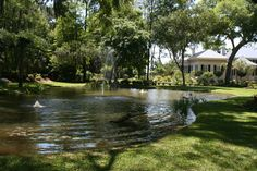 large pond with boulders - Google Search