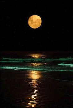 Moonrise.  beach, ocean