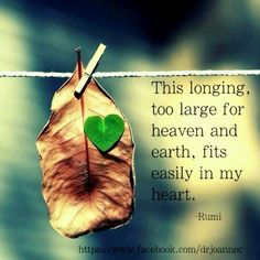 Afbeeldingsresultaat voor my heart had been torn to pieces looking for help rumi