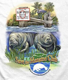 Adopt-A-Manatee and Get a Free Club T-Shirt!