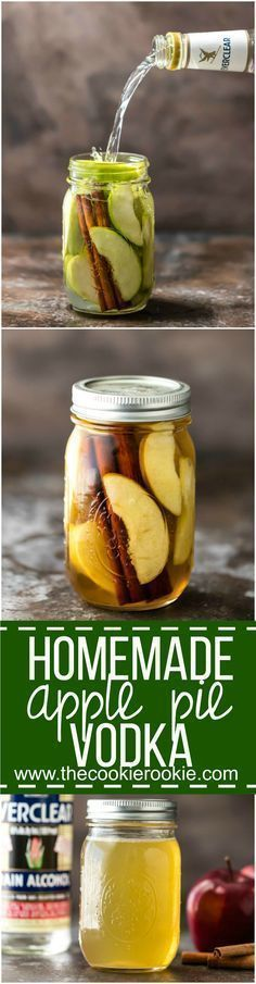 Homemade Apple Pie Vodka is an easy gift idea for Fall! Simple Apple Pie Vodka…