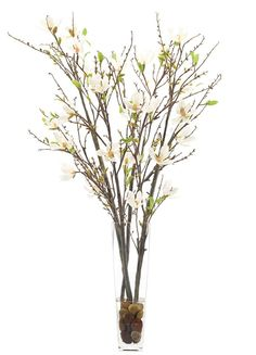 """This wonderful Magnolia tree with cream and white flowers (51"""" x 25"""") would look great in any space including an office, tabletop, or foyer."""