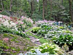 Landscaping On A Hill, Driveway Landscaping, Landscaping With Rocks, Landscaping Ideas, Acreage Landscaping, Farmhouse Landscaping, Landscaping Plants, Outdoor Landscaping, Landscape Arquitecture