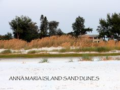 sand dunes on the north end