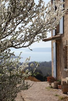 Beautiful Provence ~ the light