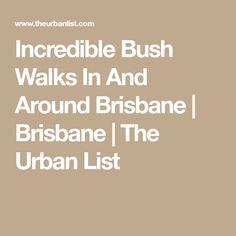 Incredible Bush Walks In And Around Brisbane | Brisbane | The Urban List