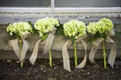 Hydrangea bouquets w/burlap bows -- would be easy to do w/wide ribbons in wedding colors. Simple, lovely & cheap bouquet idea that would also dry well (it would last well through the day w/o major wilting!).