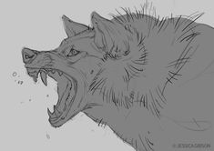 Angry Wolf Sketch by Servaline on DeviantArt Animal Sketches, Animal Drawings, Cool Drawings, Art Sketches, Wolf Poses, Angry Wolf, Angry Animals, Wolf Sketch, Wolf Artwork