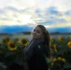 sunflower photo shoot -Michelle Renee Photography