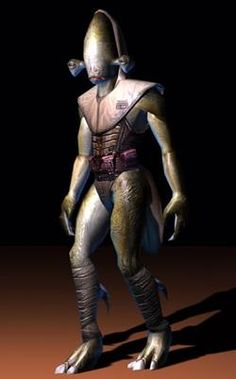 The Rakata species from Star Wars KOTOR. They were the rulers of the Infinite Empire, which existed years before the Republic was formed. Consisted only of 500 systems, the Empire used both the Star Forge and the power of the Rakata to subdue other species – before their demise because of riots and mysterious plague 25 000 BBY.