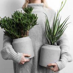 trendy plants indoor apartment aloe vera – Famous Last Words Image Deco, Apartment Plants, Plant Wallpaper, Room With Plants, Plant Painting, Interior Plants, Deco Design, Design Art, Cool Plants