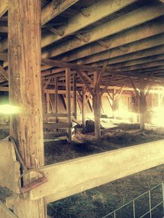 One of my favorite barns on our farm - history, memories, legacy..
