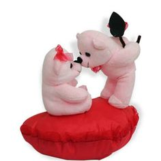 Beautiful teddy couple - Valentine's day Gifts For her
