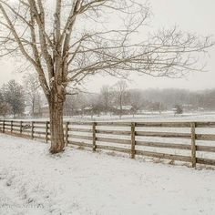 The Farm. #kkgroupies #pin #ohio #myoh #ohphotography #winter #winterinohio #snow #christmasinohio #myohioadventure #simplepleasures #simplejoys #historic #westernreserve #cvnp #cuyahogavalleynationalpark #ohioexplored #roamohio #akronohio #summitcounty #halefarmandvillage #halefarm
