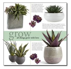 """""""All things grow with love"""" by gracecar3 ❤ liked on Polyvore featuring interior, interiors, interior design, home, home decor, interior decorating, John-Richard, plants and planters"""