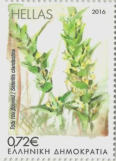Buy and sell stamps from Greece. Meet other stamp collectors interested in Greece stamps. Sell Stamps, Stamp Catalogue, Postage Stamp Art, Flower Stamp, Wild Flowers, Flora, Junk Journal, Board, Collection